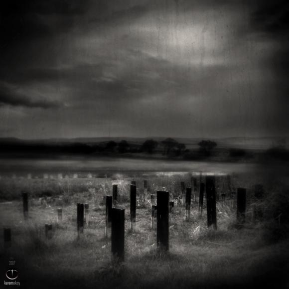 asylum_garden_by_dreamcatcherx.jpg