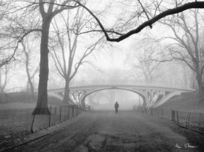 henri-silberman-gothic-bridge-central-park-nyc-148240.jpg